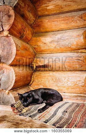 Domestic black cat sleeping on a doormat