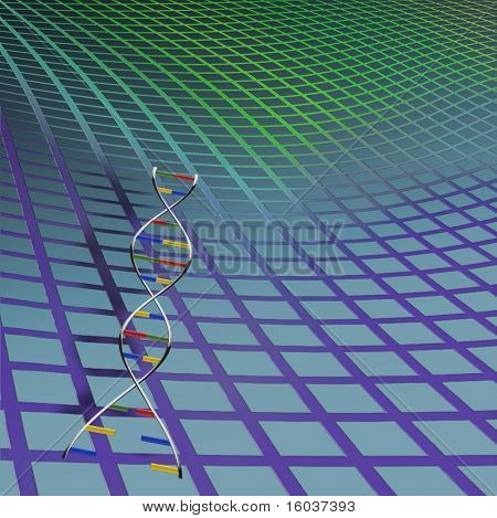 DNA strand on warped grid