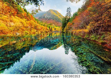 Beautiful View Of The Five Flower Lake Among Fall Woods