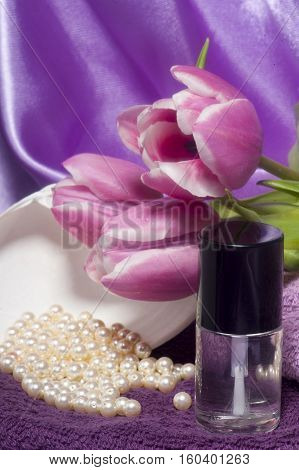 Nail Polish And Tools  For Manicure