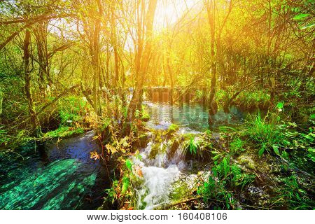 River With Azure Crystal Clear Water Among Green Forest