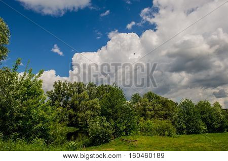 clouds and forest spirng day sunny UKRAINE