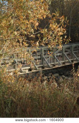 Ponte sobre rochas
