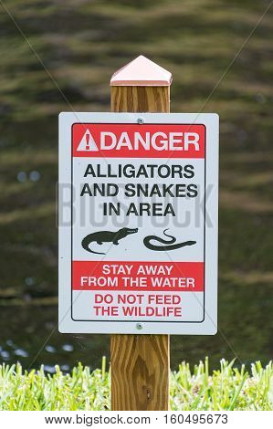 Aligator and Snakes Warning sign on wooden post
