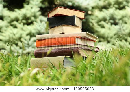 Pile of books on green grass