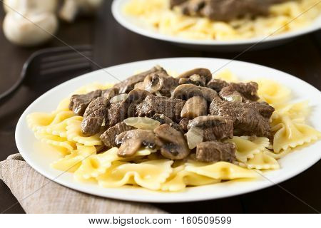 Beef Stroganoff a dish made of pieces of beef mushroom and onion in cream sauce served on farfalle pasta photographed with natural light (Selective Focus Focus in the middle of the dish on the plate)