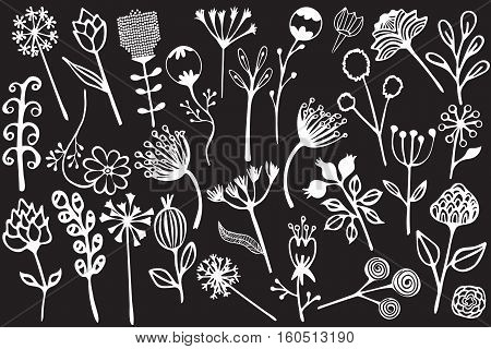 Hand Drawn vintage floral elements of flowers leaves branches decorative plants for design background invitations greeting cards flayers scrapbooking etc