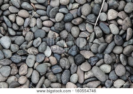 Background of round pebble stones with dry leaves