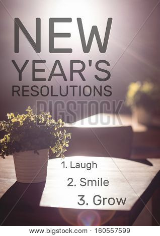 List of new year resolution goals against flower pot in background