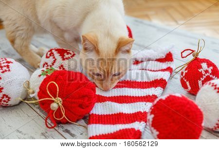 Cat Sniffs Christmas Balls Knitted
