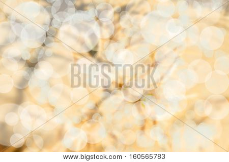 abstract Bokeh circles for Christmas background glitter light Defocused and Blurred Bokeh