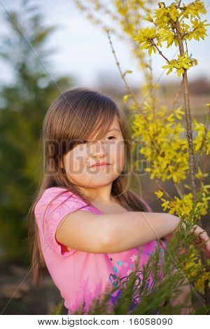 Forsythia girl