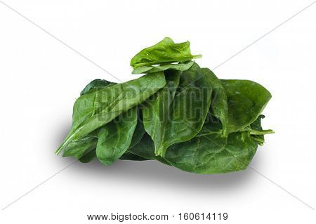 Image of spinach studio isolated on white background