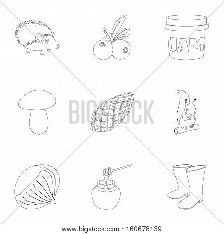 Autumn weather icons set. Outline illustration of 9 autumn weather vector icons for web