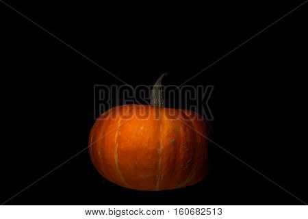 Pumpkin on black background. Isolated in black