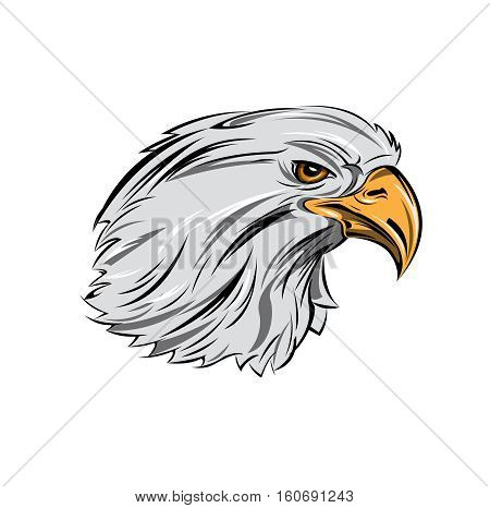 Eagle head in profile with proud gaze of yellow eyes on white background isolated vector illustration