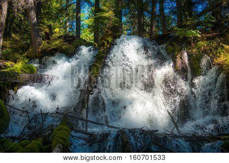 Clearwater Falls Douglas County Oregon Landscape Umpqua National Forest