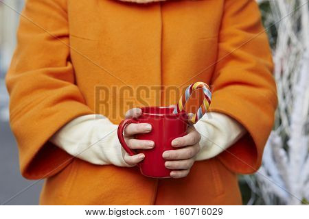 Woman Hands Holding A Cozy Mug With Hot Cocoa