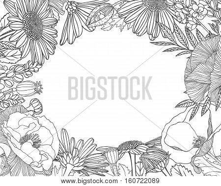 Linear Floral Frame. Vector Background