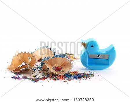 blue sharpener duck shaped and colorful scrap colored pencils isolated on white background