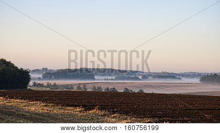 Early morning in the misty fields near Aarhus, Denmark