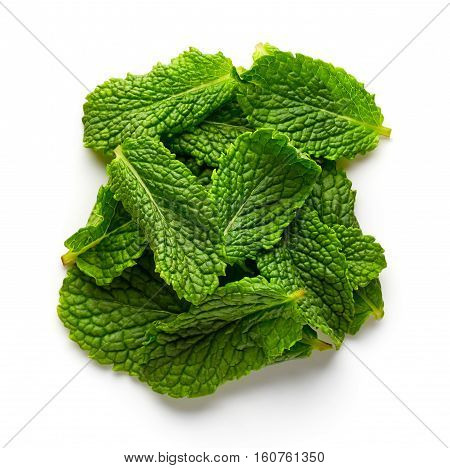 Mint Leaves Isolated On White, From Above
