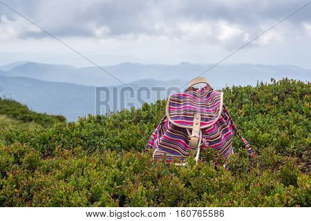 Bright young girl's backpack in the grass blueberries in the mountains. Vacation concept.