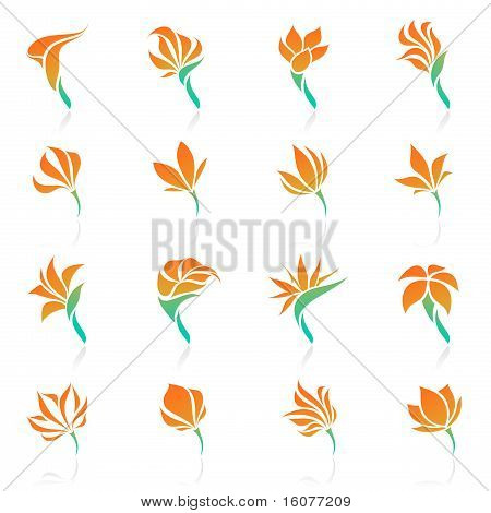 Tropical Flowers. Template Set. Elements For Design. Icon Set.