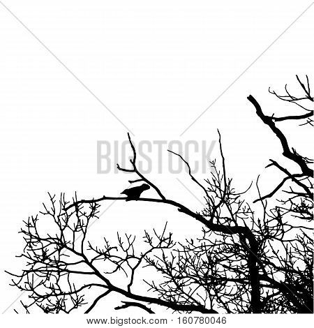 Vector black raven silhouette of a bare tree. Black crow silhouette image on white background. Vector illustration.