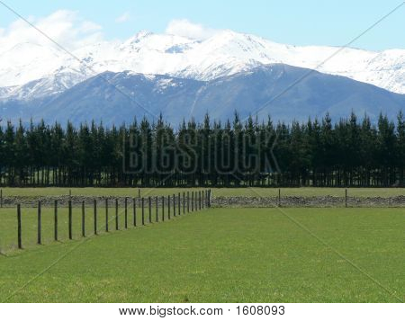 New Zealand Mountain And Farm