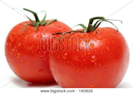 Two Vine Tomatoes Macro
