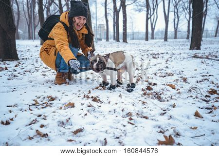 French Bulldog dog playingin the winter with woman in the park