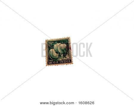 Mangoes - An Indian Postal Stamp