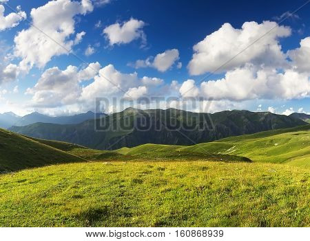 Pasture in mountain valley. Agriculture landscape in the summer time