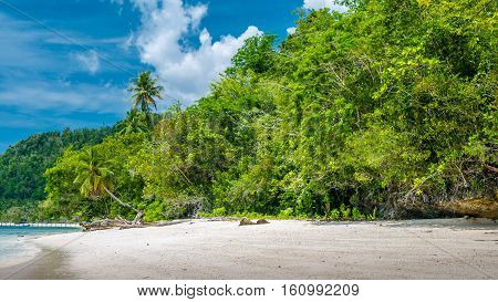 Bamboo Huts under Palm Trees of an Homestay on Gam Island, West Papuan, Raja Ampat, Indonesia.