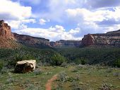 Trail In Colorado National Monument