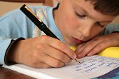picture of school child  - Schoolboy is reading and writing his school homework at home - JPG