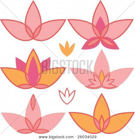 Lotus. Vector design elements