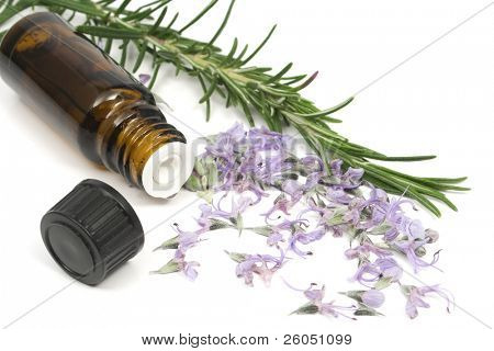 Rosemary branch, flowers and essential oil bottle on white background