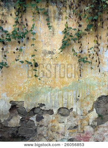 an old colonial wall