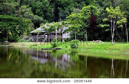 longhouse in sarawk ( bornio )