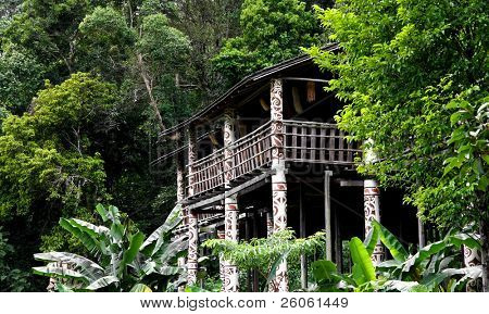longhouse in sarawak  (bornio )
