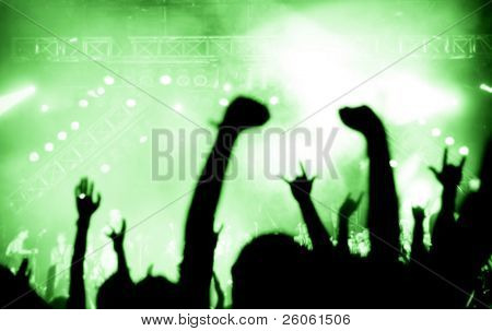 Music Festival (Entertainment Event)