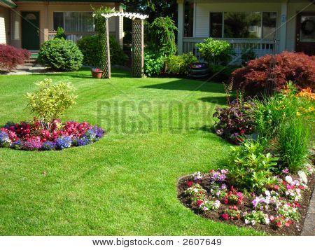 Manicured Yard