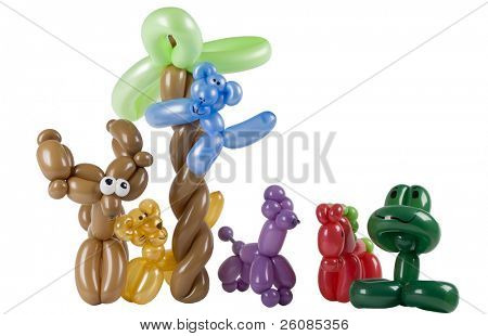 Twisted balloon animals isolated on white