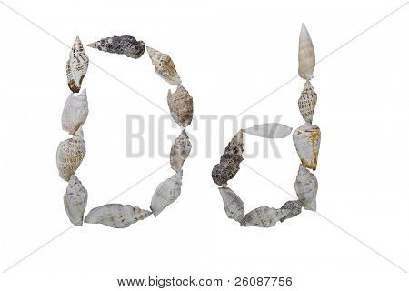 D letter from real seashells  isolated on white background