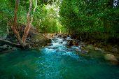 Waterfall Water Nature River Stream Forest Landscape Cascade Green Rock Rocks Fall Flow Creek Stone  poster