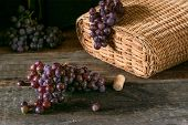 Bunches Of Fresh Ripe Red Grapes On A Wooden Textural Surface. Branch Of Pink Grapes. Red Wine Grape poster