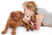 foto of dogue de bordeaux  - Young girl with puppy of Dogue de Bordeaux  - JPG