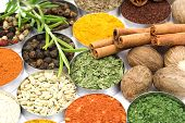 stock photo of indian food  - Spices and herbs used in indian cooking - JPG